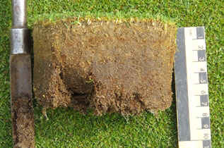 Turf soil measurement