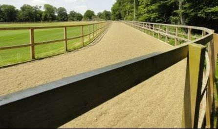 Polo training track surrounding stick and ball ground by Agrostis